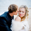 Kissing bride and groom — Stock Photo #2756657