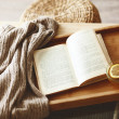 Book and sweater — Foto de Stock