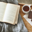 Book and sweater — Stockfoto