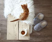 Details of rustic home — Stockfoto