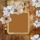 Summer greeting card — Stock Photo