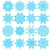 Set of sixteen snowflakes — Stock Vector