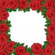 Frame of red roses isolated on white background — Stock Vector