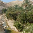 Wadi Qelt or Nahal Prat creek in Judean Desert near Jericho in spring — Stock Photo