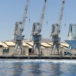 Row of cranes and their reflections in the sea in Eilat harbor, Israel — Stock Photo