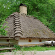Traditional farmer's house under the thatch roof in open air museum, Kiev, Ukraine — Stock Photo