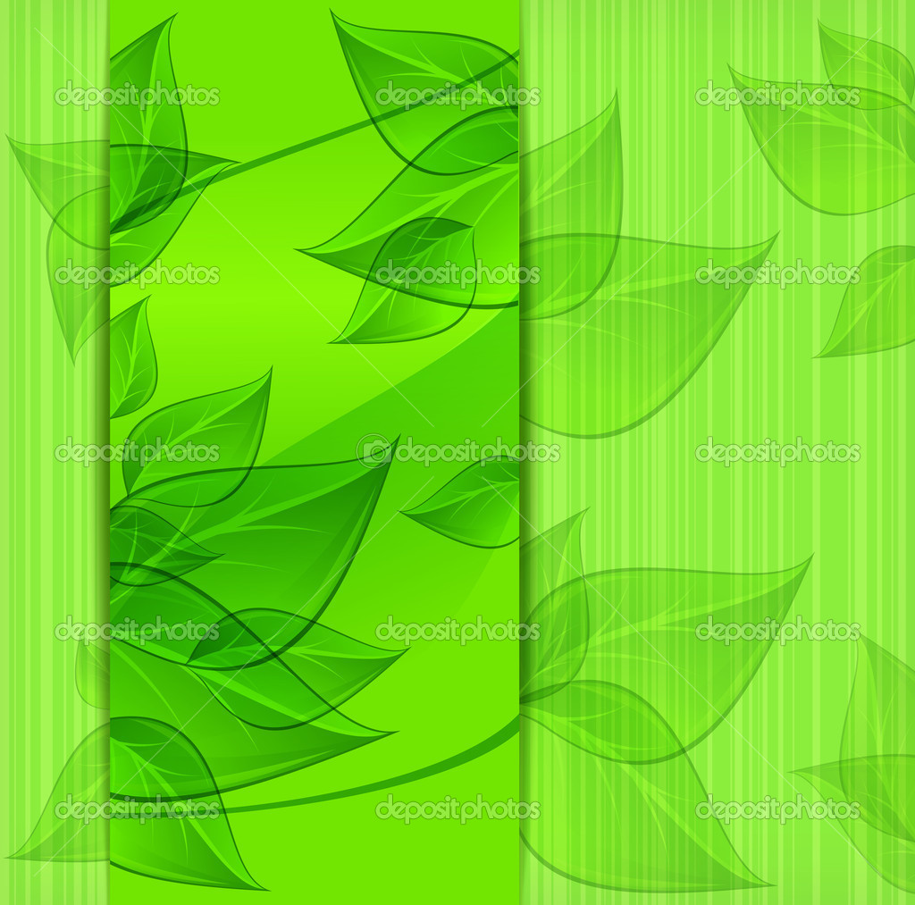 Banners with green leaves on nature background, vector illustration — Stock Vector #12406033
