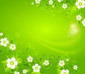 White flowers on green background — Stock Vector