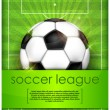 Ball on green field background and text - Imagen vectorial