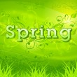 Spring background green — Stock Vector