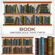 Books on shelves & text — Stock Vector