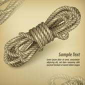 Coil of rope on rown & text — Stock Vector