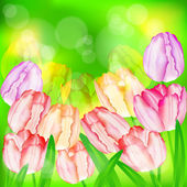 Tulip flowers on green — Stock Vector