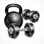 Metallic kettle bell and two dumbbells — Vector de stock