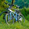 Bicycles parked near tha lake — Stock Photo #3479697