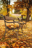 Autumnal park with bench — Stock Photo