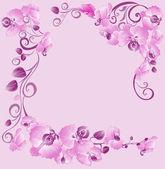Frontera floral con orquídeas para su diseño — Vector de stock