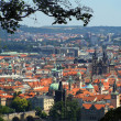 Panoramatic view in Prague - Stock Photo
