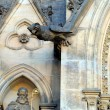 Fragment of gothic cathedral in Prague - Stock Photo