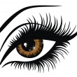 Vector illustration beautiful female brown eye — Vector de stock