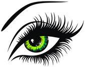 Vector illustration beautiful female green eye — Stock Vector