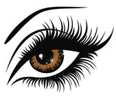 Vector illustration beautiful female brown eye — Stock Vector