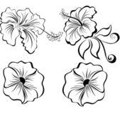 Fleurs stylisées de noir et blancs — Vecteur