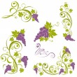 Grapevine. Wine design elements - Stock Vector