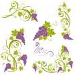 Stock Vector: Grapevine. Wine design elements