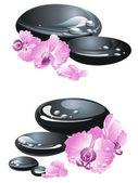 Spa Steine mit Orchideen — Stockvektor