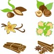 Collection of dessert ingredients. Hazelnuts, Cocoa beans, Vanil - Stock Vector