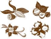 Collection des ingrédients de dessert. noisettes, cacao, vanil — Vecteur