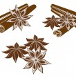 Star anise with Cinnamon sticks isolated on white - Stock Vector