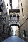 Gothic quarter in Barcelona, Carrer del Bisbe — Stock Photo