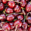 Sweet cherry — Stock Photo #28168529