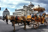 PISA, ITALY - JUNE 24: Horse Carriage awaits next client, June 2 — Stock Photo
