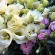 Bouquet of white and pink roses — Stock Photo