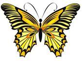 Farfalla monarca isolato su sfondo bianco — Vettoriale Stock