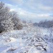 Beautiful winter landscape with snow covered trees — Stock Photo #37970631
