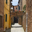 Little street in the old town in Siena, Tuscany, Italy — Stock Photo