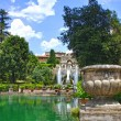 Fountain in Villa d'Este in Tivoli, Italy, Europe — Stock Photo #38481695