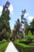 Park in Villa d'Este. Tivoli, Italy — Stock Photo