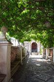 Villa d'Este in Tivoli. Italy — Stock Photo