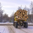 Transportation of logs on a truck on a forest road in winter — Stock Photo