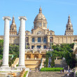 National Museum in Placa De Espanya, Barcelona. Spain — Stock Photo #40737725