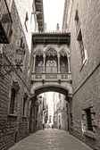 Bridge at Carrer del Bisbe in Barri Gotic (Bishop Street), Barcelona, Catalonia, Spain — Foto Stock