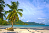 Untouched tropical beach in Thailand — Stock Photo