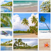 Collage of summer tropical beach image. Nature and travel background — Stockfoto