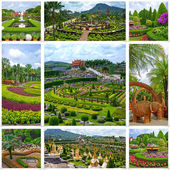 Collection image of Nong Nooch Tropical Botanical Garden, Pattaya, Thailand — Stock Photo