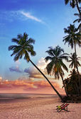 Beautiful tropical beach with silhouettes of palm trees at sunset — Stock Photo